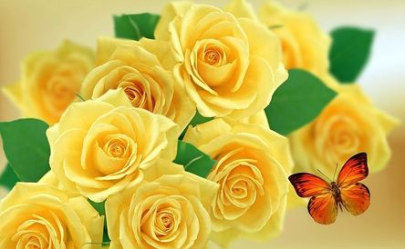 yellow-rose-952094__480.jpg